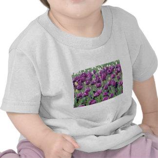 Tulipanes púrpuras del paraíso camiseta