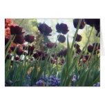 Tulipanes púrpuras en un día de primavera felicitacion