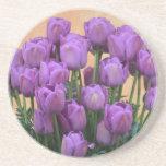 Tulipanes púrpuras hermosos de la primavera posavaso para bebida