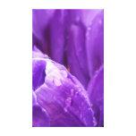 Tulipanes púrpuras impresiones en lona