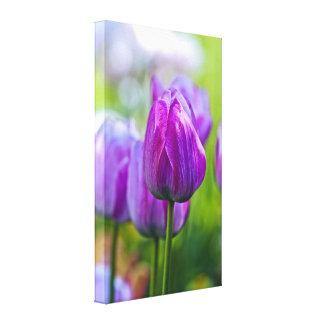 Tulipanes púrpuras impresion en lona