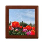 Tulipanes que miran hacia el cielo caja de regalo