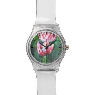 Tulipanes rayados rosados y blancos elegantes relojes de pulsera