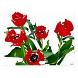 Tulipanes rojos brillantes postal