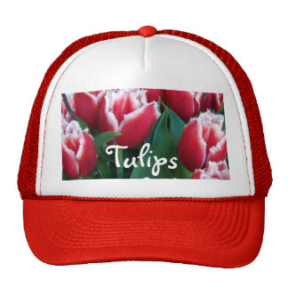 Tulipanes rojos franjados gorras