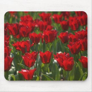 Tulipanes rojos Mousepad Tapete De Raton
