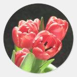 tulipanes rojos pegatinas redondas