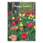 Tulipanes rojos, primavera amarilla, anaranjada, tarjeta de felicitación