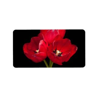 Tulipanes rojos sangre en el fondo negro modificad etiquetas de dirección