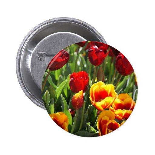 Tulipanes rojos y amarillos pin
