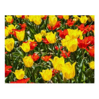 Tulipanes rojos y amarillos postal