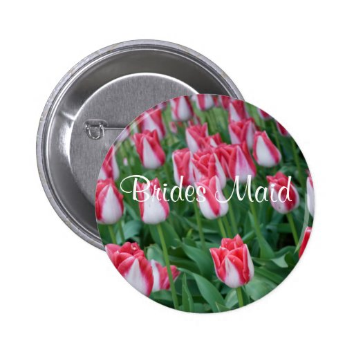 Tulipanes rojos y blancos, botón de la criada de l pins