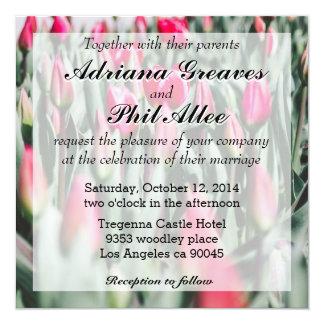 """Tulipanes rojos y rosados, campo de flor en invitación 5.25"""" x 5.25"""""""