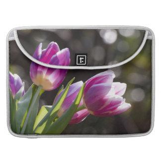 Tulipanes rosados Bokeh Funda Macbook Pro
