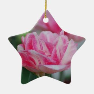 Tulipanes rosados bonitos adornos