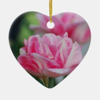 Tulipanes rosados bonitos ornato