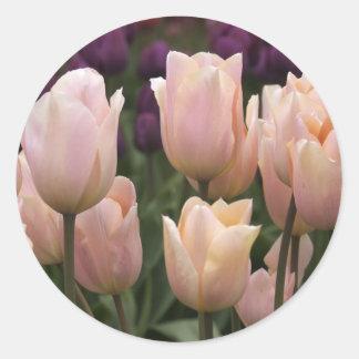 Tulipanes rosados de Jodi Tripp Pegatina Redonda