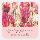 tulipanes rosados del jardín - vela o etiqueta per