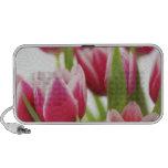 Tulipanes rosados laptop altavoces