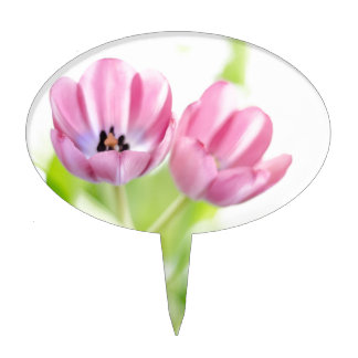 Tulipanes rosados mojados en luz decoraciones de tartas