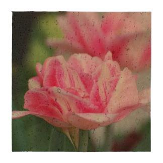 Tulipanes rosados posavasos