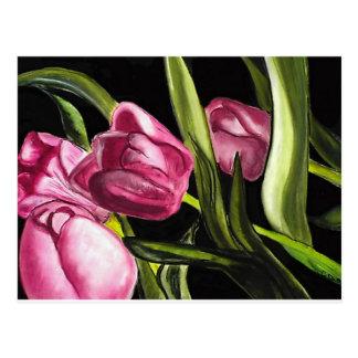 Tulipanes rosados tarjeta postal