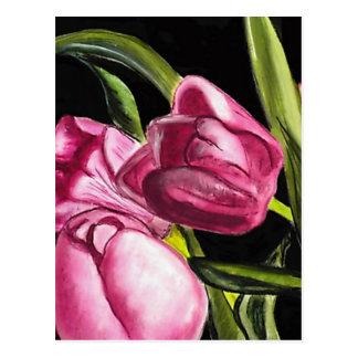 Tulipanes rosados postales