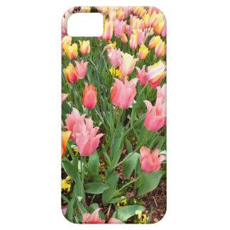 Tulipanes rosados y amarillos en una cama de flor iPhone 5 funda