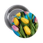 Tulipanes rosados y amarillos hermosos de la prima pins