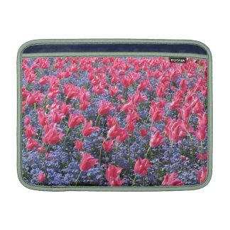 Tulipanes rosados y flores púrpuras fundas para macbook air