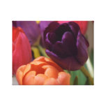 Tulipanes soñolientos impresiones de lienzo