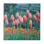 Tulipanes Teja Cerámica