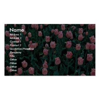Tulipanes tempranos, rosados tarjetas de visita