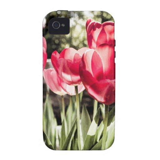 Tulipanes Vibe iPhone 4 Carcasa