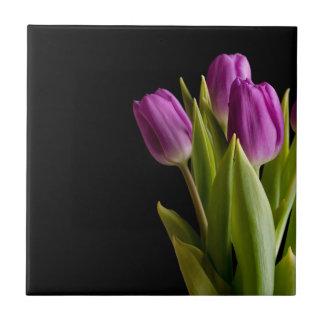 Tulipanes violetas azulejo