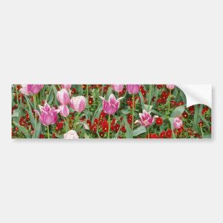 Tulipanes y flores rosados de los pensamientos pegatina de parachoque