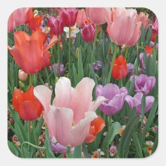 Tulipanes y pensamientos 2 etiquetas