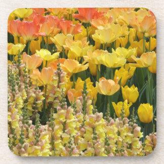 Tulipanes y prácticos de costa de Snapdragons Posavasos De Bebidas