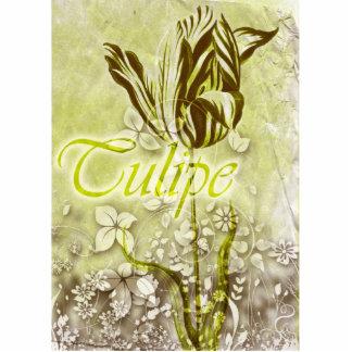 Tulipe Esculturas Fotograficas