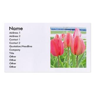 tulipfamily, nombre, dirección 1, dirección 2, tarjetas de visita