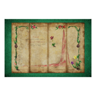 Tulipomania Graph (green) Poster