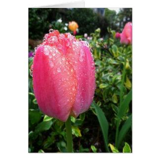 Tulips #1 card