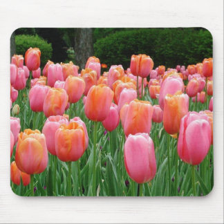 Tulips #1 mouse pad