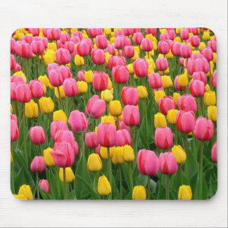 Tulips 1 Mouse Pad