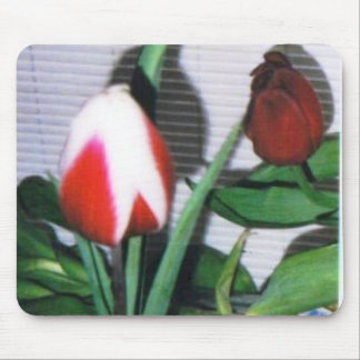 tulips #20 mouse pad