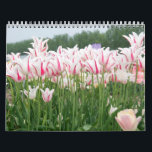 """tulips all year round calendar<br><div class=""""desc"""">tulips all year round</div>"""