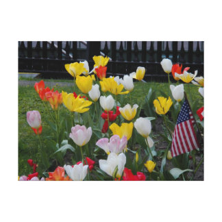 Tulips American Flag St Pauls Chapel Stretched Can Canvas Print