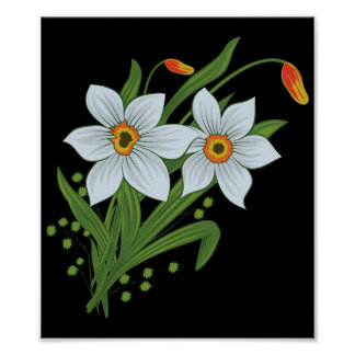 Tulips and Daffodils Flowers Black Background Poster