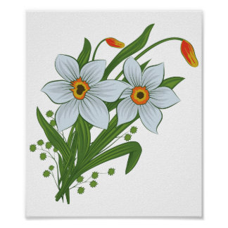Tulips and Daffodils Flowers Poster