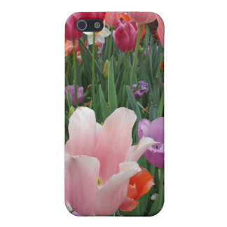 Tulips and Pansies 2 Cases For iPhone 5